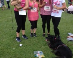 The Walnutters Race for Life Group